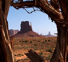 Monument Valley by BornToRoam