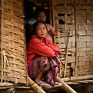 Laos Village by David Reid