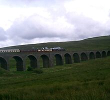 Steam Train special crossing Ribblehead Viaduct by sueshep
