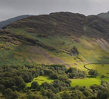 Newlands Valley Panorama by Simon Hathaway