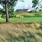 Timber Pointe Golf Course  by Dave Nielsen