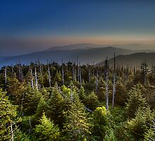 On Top Of Old Smoky by Ray Mosteller