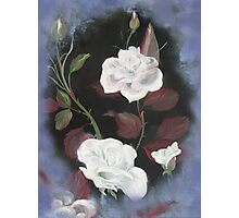 White Roses  -  Meanings   Photographic Print