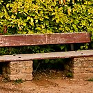 Old Wooden and Stone Bench by Buckwhite