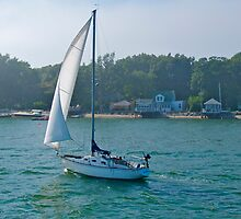 """Sailboat Brandy"" - Summer in Boston Series- © 2009 by Jack McCabe"