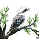 Kookaburra oriental style watercolour.. by bev langby