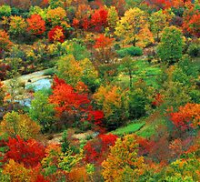 GRAVEYARD FIELDS,AUTUMN by Chuck Wickham