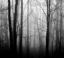 The Forest and the Fog 2 by KendraJKantor