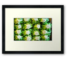 Cool Green Heads Prevail! Framed Print