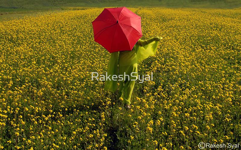 SPRING TIME by RakeshSyal