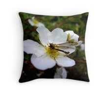 The dragonfly on the flower Throw Pillow