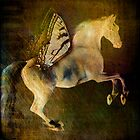 cheval de vol (flying horse) by wolfandbird
