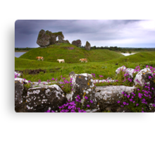 Castle at Clonmacnoise Canvas Print