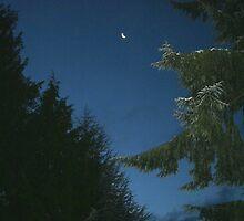 Sliver Moon by starlitewonder