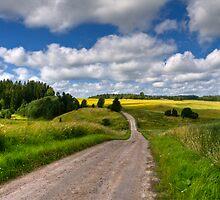 Old road by Veikko  Suikkanen
