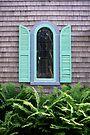 Window by Paul Finnegan