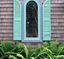 Window by Paul Finnegan