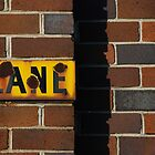 lane by steveault