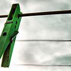 green peg by KimberlyClark