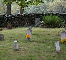 Old Virginia Cemetery by bcollie