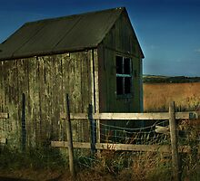Pennine Shed by Mark Curry