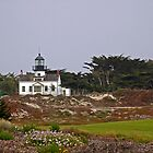 Point Pinos Light by Ron LaFond
