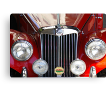 Grille Power (Just Like The Spice Girls Said!) Canvas Print