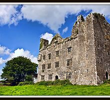 Leamanagh Castle, County Clare, Ireland. by upthebanner