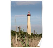 Cape May Lighthouse through the Reeds Poster