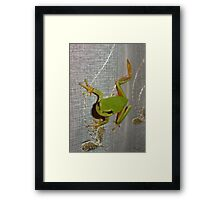 Hopped In to say 'Hi' Framed Print