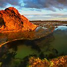 The Rock Pool by David  Hibberd