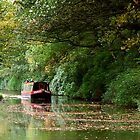 Skipton Canal by Allan Savage