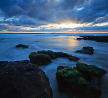 Woolamai Rays by Andrew Widdowson