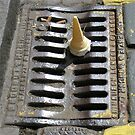 Grate but it's in the gutter by John Nelson Photography