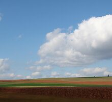 farmlands by mikepaulhamus
