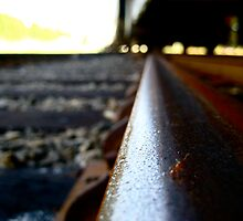 Ant on a Railroad Track  by Greta  Hasler