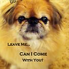If You Leave Me.... by Susan Bergstrom