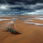 debris, balmedie beach by codaimages