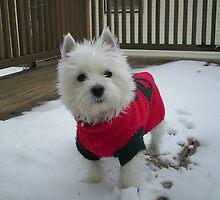 Winnie in the Snow by reindeerfamily
