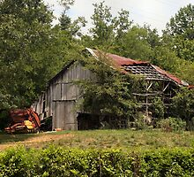 Hampshire Barn by Lisa G. Putman