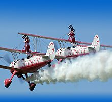 """Guinot"" Wing Walkers by Colin J Williams Photography"