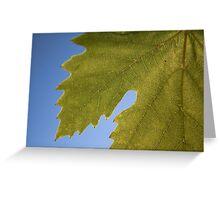 Wine Leaf Canada Greeting Card