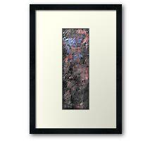 Marions Drangon Fly for Fran Framed Print