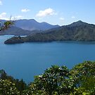 Queen Charlotte Drive by inglesina