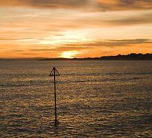 Tranquil sunset by Susan Leonard
