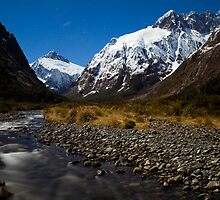 Upper Hollyford Valley, Fiordland National Park, at night by Paul Mercer