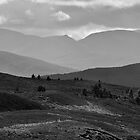 The Dava Moor - Across To The Cairngorms by Kevin Skinner