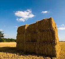 Hay Bales by Nigel Bangert