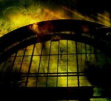 Industrial Disease by Lynne Haselden