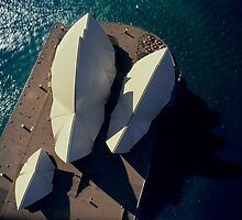 Sydney Opera House from helicopter, aerial, directly above by Brian McInerney